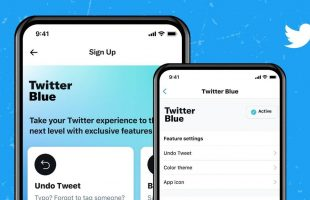 Things to Know About Twitter's Blue Subscription